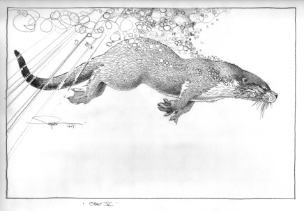 Colin See-Paynton, Otter V