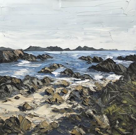 Martin Llewellyn, Low Tide, Llanddwyn Island