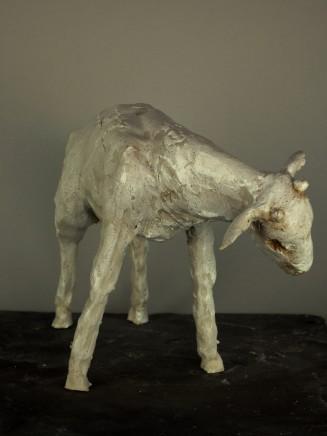 Sharon Griffin, Goat