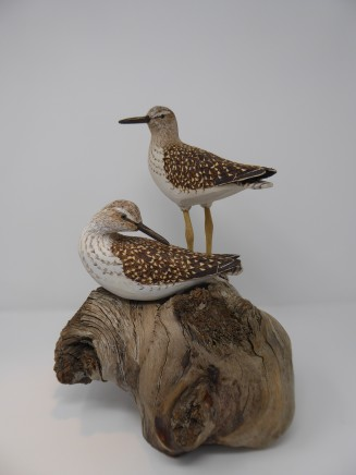 John & Marilyn Davies, Wood Sandpipers