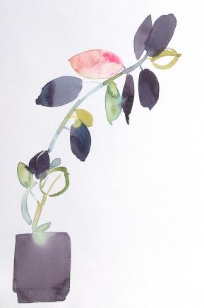 Susan Kane, Peach Tree
