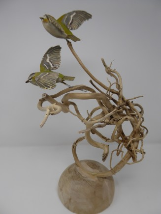 John & Marilyn Davies, Flying Firecrests