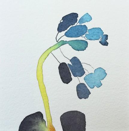 Susan Kane, Baby Hyacinth