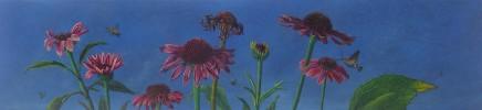 Kim Dewsbury, Echinacea Life