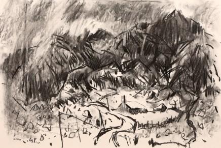 Gareth Parry, Tir Garw, Nant Peris II / Inhospitable Land, Nant Peris II