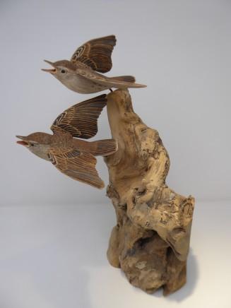 John & Marilyn Davies, Grasshopper Warblers