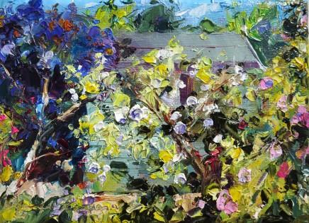 David Grosvenor, Garden Shed