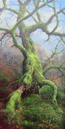 Gerald Dewsbury, Ancient Birch Uprooting