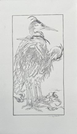 Colin See-Paynton, Grey Herons