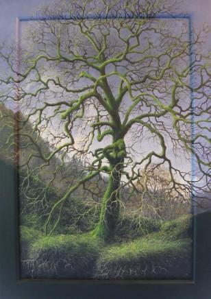 Gerald Dewsbury, Ash Tree, Ty Mawr