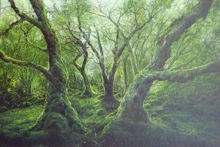 Gerald Dewsbury, Woodland Passage