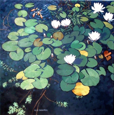 Colin See-Paynton, Our Lily Pond II