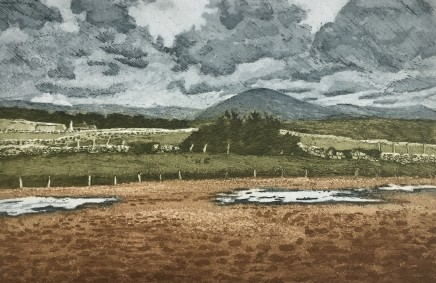 Anne Aspinall, The Maes after Rain
