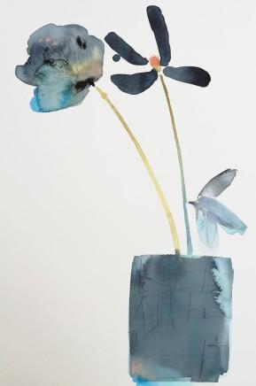 Susan Kane, Curious Flora