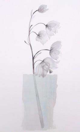 Susan Kane, Diaphanous Lily