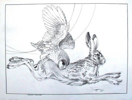 Colin See-Paynton, Nocturnal Encounter - White Owl & Brown Hare