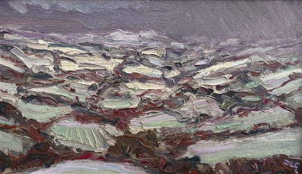 David Lloyd Griffith, Snow Shower - Dyffyn Dulas