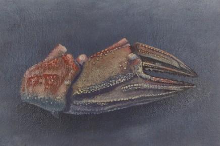 Kim Dewsbury, Crab Claw I