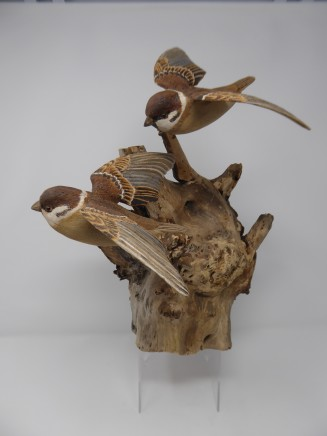 John & Marilyn Davies, Tree Sparrows