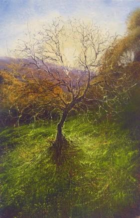 Gerald Dewsbury, Tree Burst