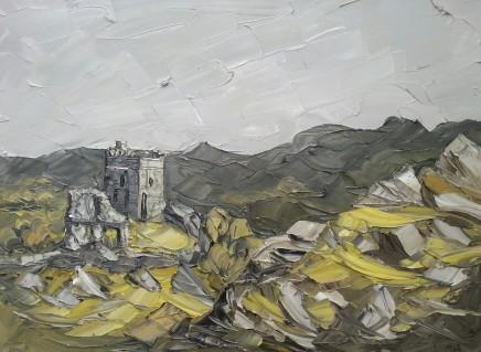 Martin Llewellyn, Dolwyddelan Castle