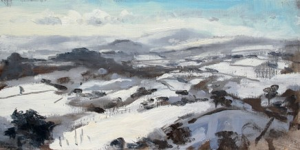 Matthew Wood, Plynlimon from Stingwern Hill