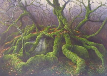 Gerald Dewsbury, Collapsed Birch