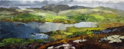 David Grosvenor, Llyn Trawsfynydd
