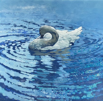 Colin See-Paynton, Mute Swan Preening I
