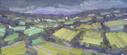 David Lloyd Griffith, July Fields - Dyffryn Dulas II
