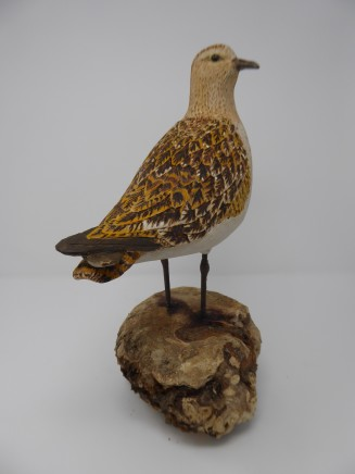 John & Marilyn Davies, Golden Plover