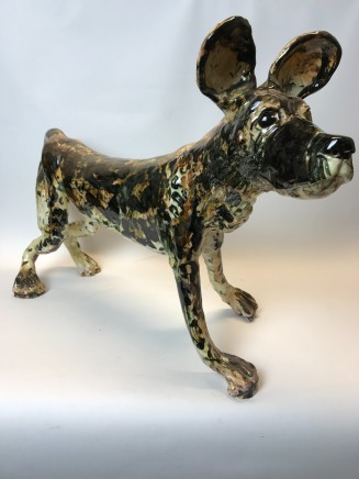 Willie Carter, African Wild Dog