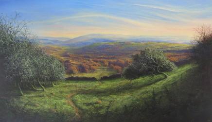 Gerald Dewsbury, Moel Phylip Meadows II