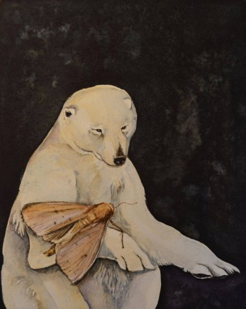 Jackie Morris, Bear and Moth, a Curious Love Story
