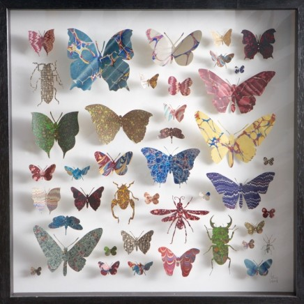 Helen Ward Paper Entomology 10 Victorian hand marbled paper and steel pins 40 x 40 cm