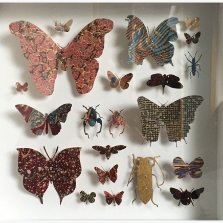 Helen Ward Lepidoptera 6 Victorian hand marbled paper and steel pins 25 x 25 cm
