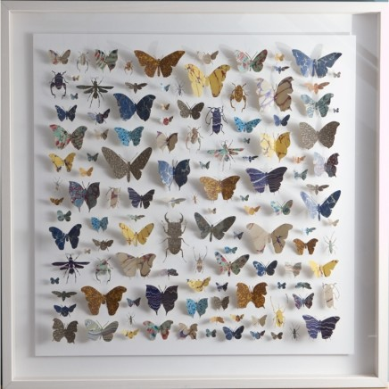 Helen Ward Lepidoptera 3 Victorian hand marbled paper and steel pins 40 x 40 cm