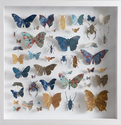 Helen Ward Lepidoptera 4 Victorian hand marbled paper and steel pins 40 x 40 cm