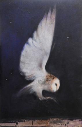 Catherine Hyde, Falling Through Starlight