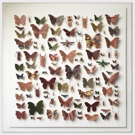 Helen Ward, Morpho Square in Red