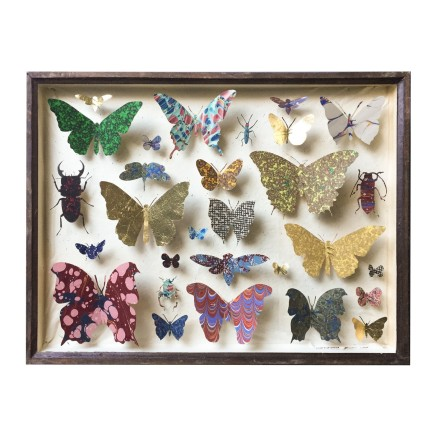 Helen Ward Entomology Case 3 Antique entomology drawer, bookbinding paper, gold leaf and enamel pins 29 x 39 cm