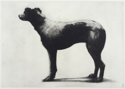Helen Fay Ruby Etching Edition 24 of 40 37.5 x 53 cm