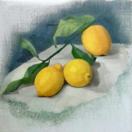 Claudia Newcome Lemon Study Oil on canvas 25 x 25 cm