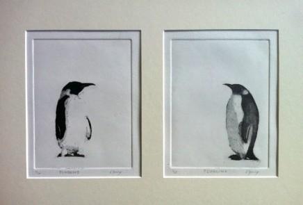 Christopher Gray Penguin Pair Etching 28 x 41 cm £90 Unframed