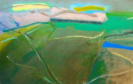 Sally McLaren, Strong Fields