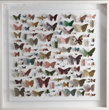 Helen Ward Lepidoptera 2 Victorian hand marbled paper and steel pins 80 x 80 cm