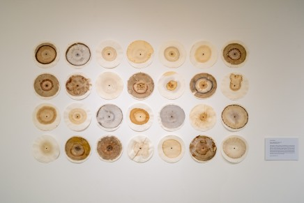 Hannah Fletcher 'Circles: Arecord of Our Time'