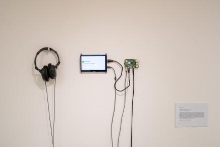 Sarab S Sethi 'Existential Jungle Bot'
