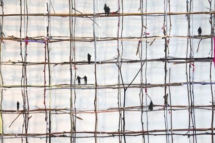 Anita Groener, How Fragile We Are (detail)