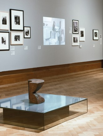 Installed shots of the Brancusi BOZAR Museum show featuring our photographs © Maxime Delvaux